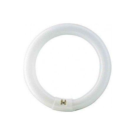 Tubo fluorescente trifosforo circular for Tubo fluorescente circular 32w