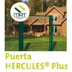 Puerta Hercules Verde Peatonal