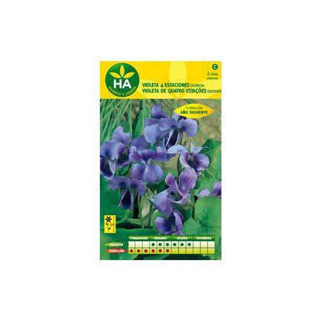 Semillas Flor Violeta 4 Estaciones HA