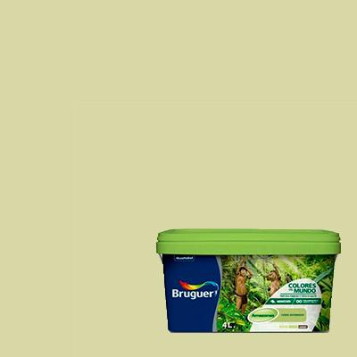 bruguer verde amazonas intermedio