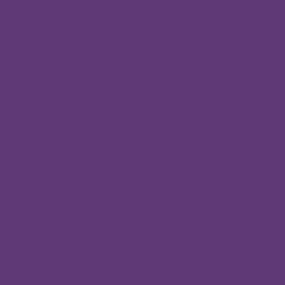 pintura plastica hidralux titan violeta